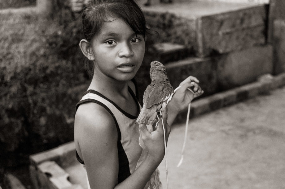 Girl with Bird - Pebas, Peru